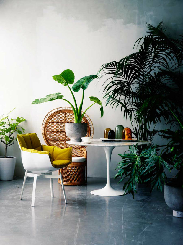mid century modern furniture color of the year tips 8