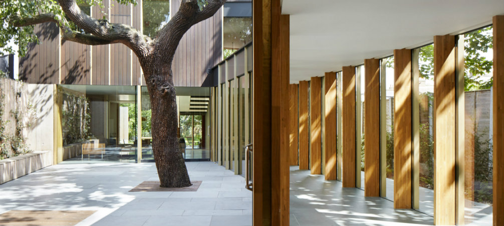 Take a Look at this Family Home designed around an pear tree