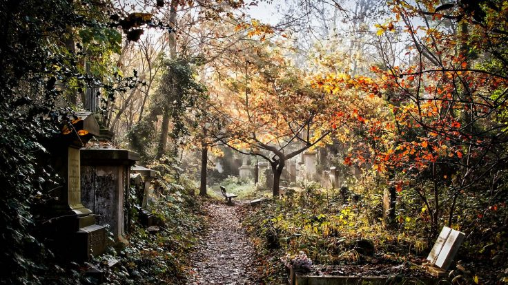 Unique things in the world: 10 Hidden Gardens to visit in London