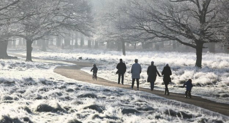 richmond-park-2 unique things in the world: 10 beautifull places to visit this winter