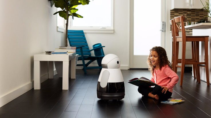 The Home Robot with a Unique Personality